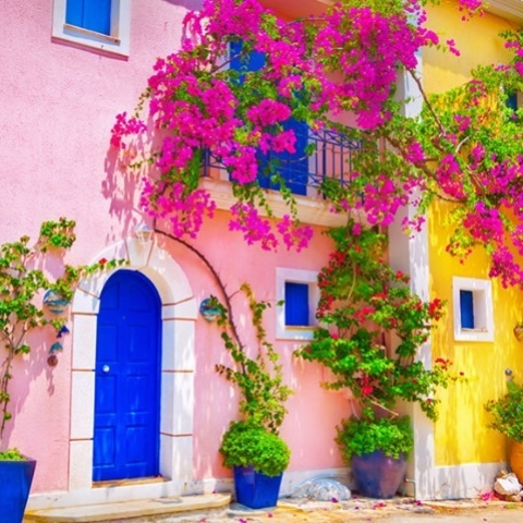 Si vous pouviez voyager maintenant, où serait-ce ? ⁠🌸 ✈️⁠ -⁠ If you could travel now, where would that be? 🌸 ✈️⁠ ⁠ ⁠ ⁠ ⁠ ⁠ #traveltheworld #greece #greecelover #greecetrip #travelgreece #coloredhouses #tripaddicts #travelnow #bourgainvillea #flowers #travelphotography #kefalonia